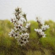 Kwiaty na dioramę