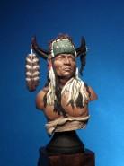 Cheyenne Chief