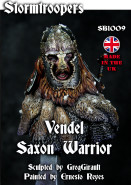 Vendel Saxon Warrior